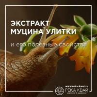 Экстракт муцина улитки и его полезные свойства